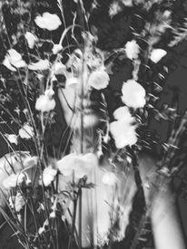 Blumen, Meer, Natur, Frau