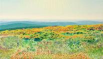Naturmalerei, Berge, Raum, Gegenlicht