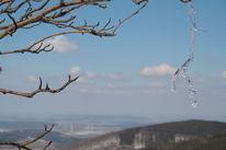 Berge, Kästeklippe, Wolken, Eberesche