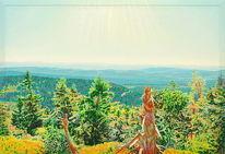 Naturmalerei, Gegenständlich, Urwald, Berge