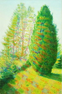 Grün, Sommer, Lichtmalerei, Lichtstrahlen