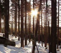 Sonne, Natur, Achtermannshöhe, Fotografie