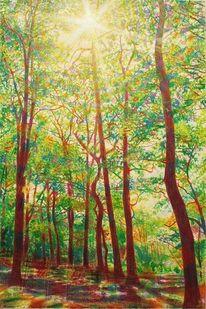 Sonne, Blätter, Wald, Baum