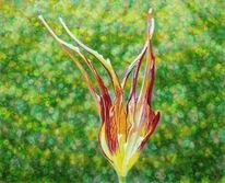 Ölmalerei, Blumen, Frühling, Licht