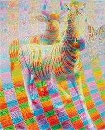 Freude, Tiere, Antilope, Zebra