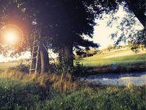 Sonne, Kleid, Busch, Wasser