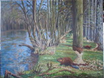 Wald, Wasser, Baum, Tiere