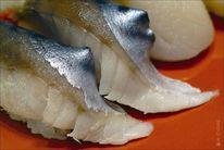 Saba, Sushi, Makrele, Nahaufme