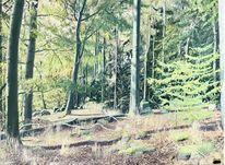 Herbst, Baum, Tag, Landschaft