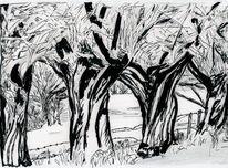 Weiden, Landschaft, Zeichnung, Zeichnungen