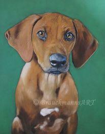 Pastellmalerei, Tiere, Haustier, Hundeportrait