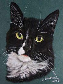 Katzen, Tiermalerei, Fotorealismus, Tierzeichnung