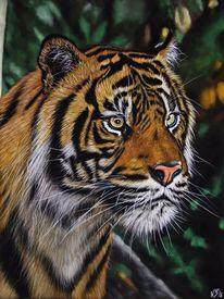 Tiere, Wildnis, Wildtier, Pastellmalerei