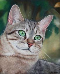 Katzenportrait, Pastellmalerei, Augen, Tierzeichnung