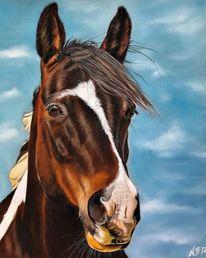 Pastellmalerei, Pferde, Tennessee, Pferdeportrait