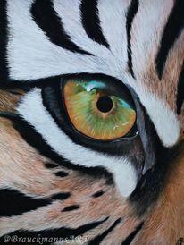 Pastellmalerei, Tiger, Tierwelt, Katze