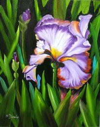Iris, Malerei, Ölmalerei blumen