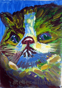 Kater, Tiere, Katze, Blau