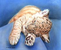 Airbrush, Tiere, Bleistiftzeichnung, Acrylmalerei