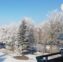 Sonnenstrahlen, November, Farben, Winter im herbst
