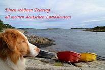 Hund, Boot, Feiertag, Küste