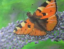 Schmetterling, Insekten, Natur, Malerei