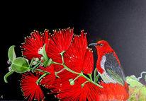 Aquarellmalerei, Tiere, Blumen, Aquarell