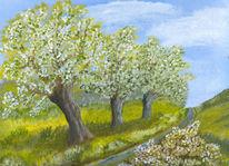 Frühling, Himmel, Baum, Weg
