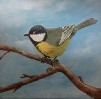 Tiere, Äste, Vogel, Baum