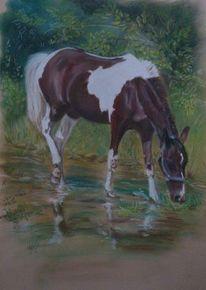 Pastellmalerei, Tierportrait, Malerei, Pferde