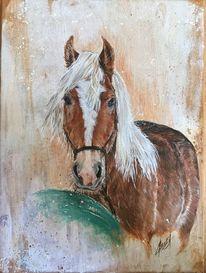 Pferde, Ball, Haflinger, Malerei