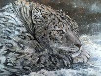 Leopard, Winter, Schnee, Malerei