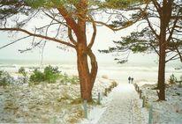 Schnee, Küste, Baum, Menschen
