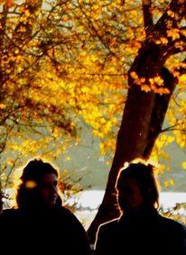Glühen, Herbst, Fotografie, Letzter