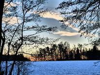 Schnee, Winter, Baum, Fotografie