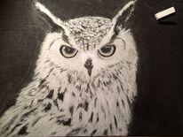 Zeichnung, Feder, Tiere, Zeichenkohle
