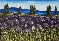 Frankreich, Lavendel, Malerei