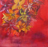 Blüte, Rot, Wei´ß, Blumen