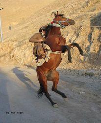 Warm, Pferde, Verletzen, Kind