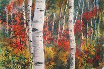Landschaft, Birken, Aquarellmalerei, Aquarell