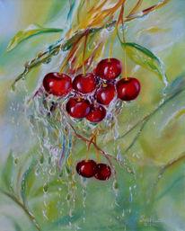 Kirsche, Regen, Pflanzen, Rain drops