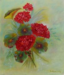Stillleben, Geranie, Pflanzen, Blumen