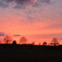 Sonnenuntergang, Sonne, Baum, Himmel