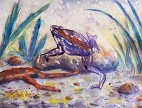 Kröte, Amphibien, Biotop, Frosch