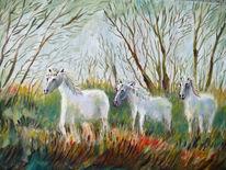 Pferde, Schimmel, Wiese, Malerei
