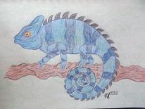 Reptil, Blau, Chamäleon, Zeichnungen