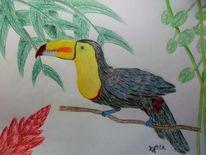Regenwald, Tukan, Zeichnung, Vogel