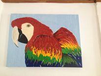Papagei, Portrait, Vogel, Acrylmalerei