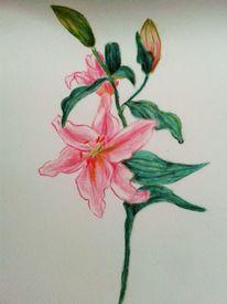 Blumen, Kreide, Geburtstag, Zeichnungen