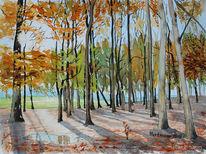 Aquarellmalerei, Licht und schatten, Herbst, Wald